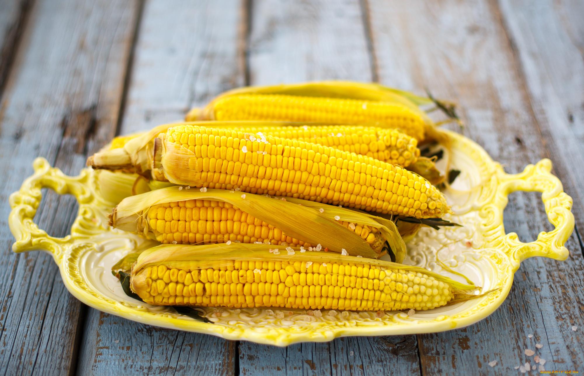 картинки на рабочий стол кукуруза для своих сказочных